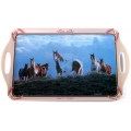 Wild Wings Serving Tray - Horses on Hilltop